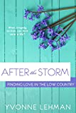 After the Storm (Finding Love in the Low Country Book 1)