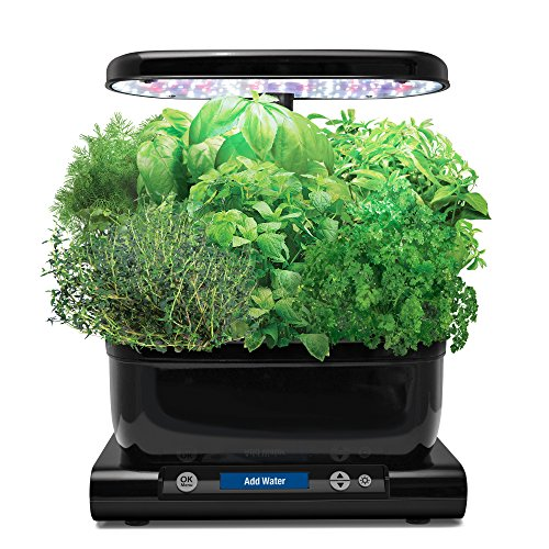 AeroGarden Harvest (Classic) with Gourmet Herb Seed Pod Kit, Black