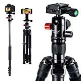 MACTREM 2019 Camera Tripod - 62' Lightweight Travel Tripod w/ [Stable Plus] Tech, 360 Ball Head & Phone Holder, Heavy Duty Aluminum DSLR Camera Tripod for Canon Nikon Studio Camcorder, Classic Black