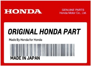 HONDA 80109-MGZ-J80 RUB, COVER (LOWER)