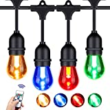Foxlux Outdoor Color String Lights - Color Changing LED String Lights - 48 ft Patio Lights with 15 Sockets - Red, Green, Blue and White - Waterproof Plastic Bulbs for Backyard, Garden, Bistro, Café