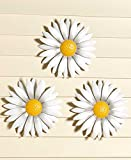 The Lakeside Collection Set of 3 Wall Daisies