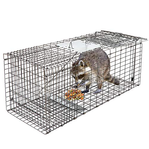HomGarden Live Animal Trap 32'x12.5'x12' Catch Release Humane Rodent Cage for Rabbits, Groundhog, Stray Cat, Squirrel, Raccoon, Mole, Gopher, Chicken, Opossum, Skunk & Chipmunks Nuisance Rodents