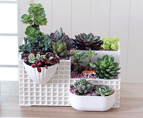 Desktop Potted Stand