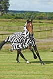 Product review for Bucas Zebra Fly Sheet 81