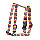 Yellow Dog Design Rainbow Chevron Roman Style H Dog Harness, X-Small-3/8 Wide and fits Chest of 8 to 14'
