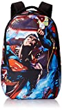 Superman Men's All Over Sublimation Print Backpack, Black, One Size