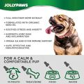 Jollypaws-Hemp-Oil-for-Dogs-and-Cats-500-MG-All-Natural-Pain-Relief-Stress-Anxiety-Support-Chicken-and-Rice-Flavor-Made-in-USA