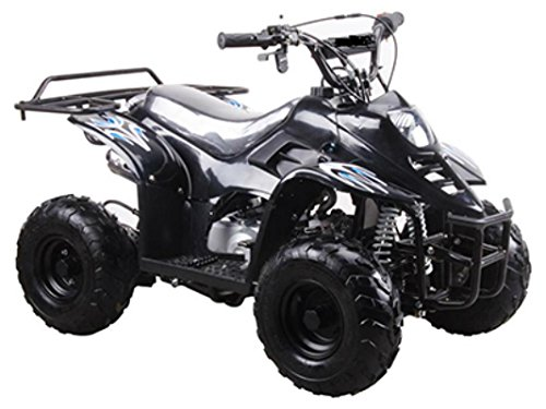 DONGFANG 110cc ATV Fully Automatic Four Wheelers 4 Stroke Engine 6' Tires Quads for Kids Black