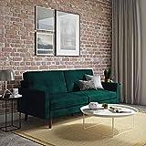 Novogratz The Audrey Futon with Independently Encased Coils and Soft Velvet for Top Comfort, Green Velvet