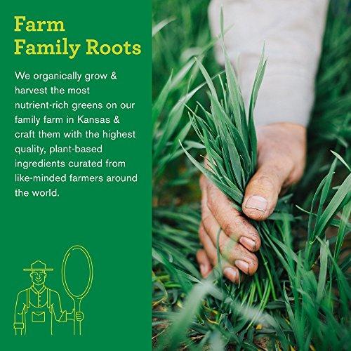 Amazing Grass Organic Wheat Grass Powder, Greens, Detox