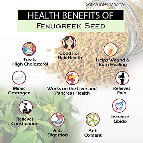 51U63XnUbnL - Exotica Fresh / Natural Dried Fenugreek Seeds | Whole Methi Dana Seeds | Indian Spices & Masala (400 g)