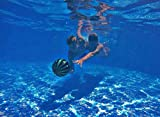 Watermelon Ball - Swimming/Diving Pool Toy for Underwater Games - Durable Pool Ball for Pool Football, Basketball & Rugby - Perfect for Water Parties - Fun for Adults & Kids Alike - Ages 8+