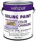 Premium White Interior Latex Ceiling Paint [Set of 4]