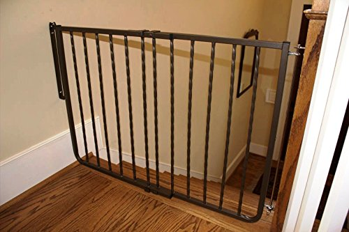 Cardinal Gates Wrought Iron Decor Gate, Bronze