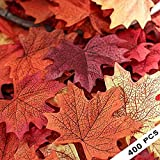 400 Assorted Mixed Fall Colored Artificial Maple Leaves for Weddings, Events and Decorating