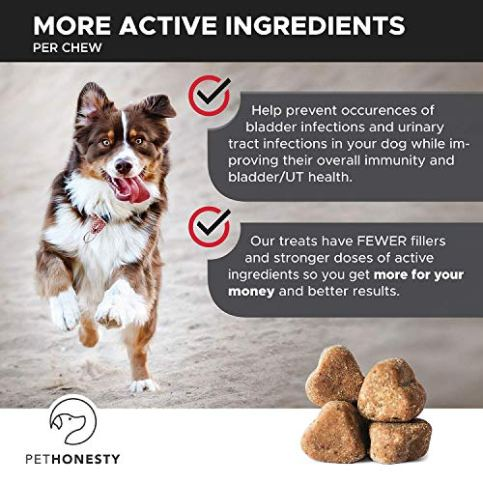Cranberry-for-Dogs-Cranberry-Pills-for-Dogs-Bladder-Support-No-More-Dog-Antibiotics-Dog-UTI-Treatment-food-Bladder-Infection-Relief-Urinary-Tract-Health-UT-Incontinence-Immune-System-D-Mannose
