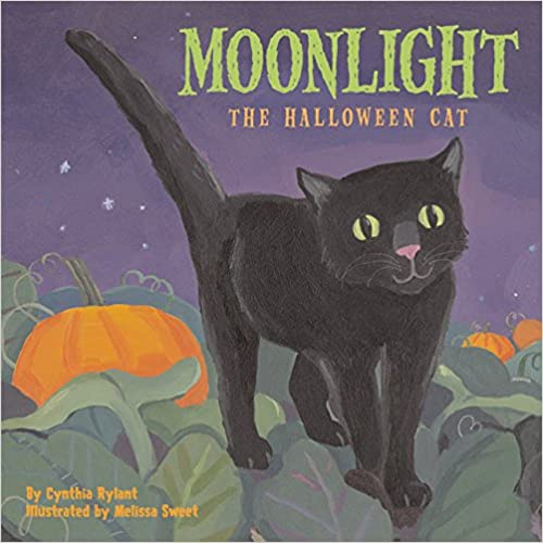 Moonlight: the Halloween cat