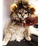 Dogloveit Lion Mane for Cat Appreal, Pet Costume Lion Wig for Dog Cat Halloween Pet Dress up with Ears