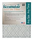 Accumulair Platinum 17x21x1 (Actual Size) MERV 11 Air Filter/Furnace Filters (6 pack)