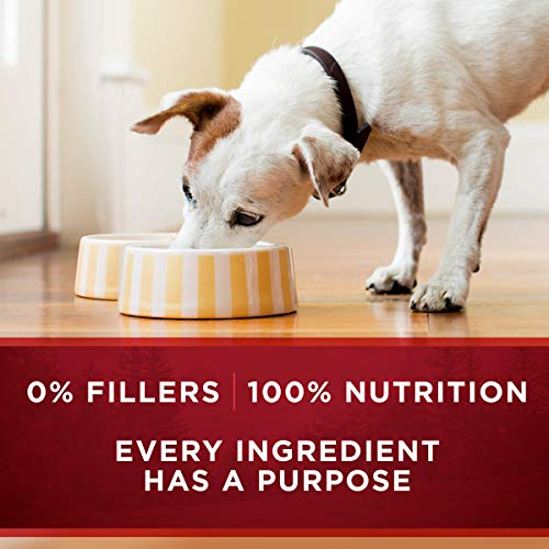 Purina ONE SmartBlend True Instinct Adult Canned Wet Dog Food 6