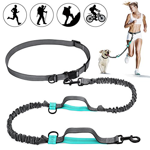 SHINE HAI Retractable Hands Free Dog Leash with Dual Bungees for Dogs up to 150lbs, Adjustable Waist Belt, Reflective Stitching Leash for Running Walking Hiking Jogging Biking 1