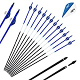 SinoArt 30-Inch Carbon Arrows 2' Blazer Vane 7.8mm Shaft Removable with Field Points Replaceable Tips for Recuve & Compound Bow (Pack of 12)