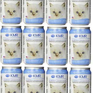 (12 Pack) KMR Milk Replacer Liquid for Kittens Size 8 Ounce 16