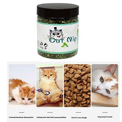 Pet Toys Cat - 100 Natural Organic Premium Catnip Catmint Powder Training Toys Cats Pet Product 120 360ml - Toys Cats Toys Ball Chat Mint Powder Flavor Catnip Stick Face Foundation Natural Ment