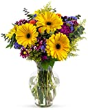Benchmark Bouquets Flowering Fields, With Vase (Fresh Cut Flowers)