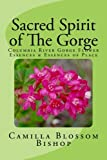 Sacred Spirit of The Gorge: Columbia River Gorge Flower Essences & Essences of Place