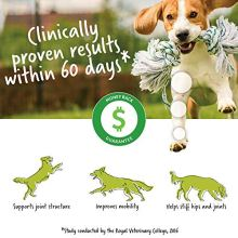 Lintbells-YuMOVE-Joint-Supplement-Dog-Chews-Contains-Glucosamine-Green-Lipped-Mussel-Natural-Relief-from-Hip-Ache-Stiff-Joints