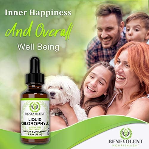 Chlorophyll Liquid Drops – Energy Boost | Immune System Support | Internal Deodorant | Altitude Sickness. Premium Quality – 100% Natural, Potent, Minty Taste, 2X Absorption. Alcohol and Gluten Free. 5
