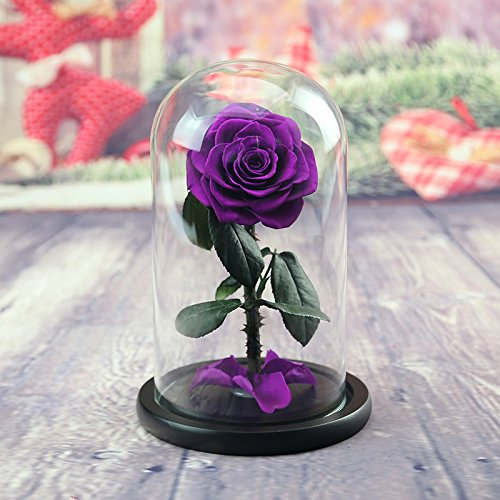 Defancy Preserved Rose In Glass Dome With Gift Box Az