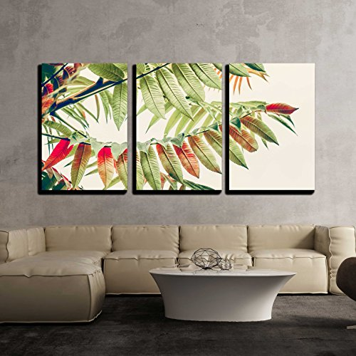 Product Features High Quality Printed Canvas