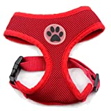 BINGPET BB5001 Soft Mesh Dog Harness Pet Walking Vest Puppy Padded Harnesses Adjustable, Red Extra Small