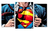 Superman logo design modular pictures painting wall art decor home room decoration canvas printed. Gift idea for boys and men. (M)