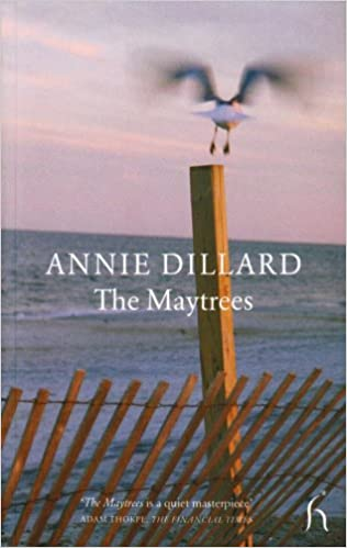 Image result for dillard the maytrees