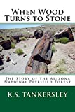 When Wood Turns to Stone: The Story of the Arizona National Petrified Forest (Exploring Nature Series)