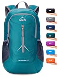 Venture Pal 25L - Durable Packable Lightweight Travel Hiking Backpack Daypack Small Bag for Men Women Kids (Green)