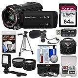Panasonic HC-V770 Wireless Smartphone Twin Wi-Fi HD Video Camera Camcorder + 64GB Card + Case + LED Light + Microphone + Tripod + Tele/Wide Lens Kit