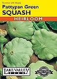 Organic Pattypan Green Summer Squash Heirloom Seeds - 3 Grams