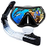 VillSure Snorkel Set Adult,Dry Top Snorkeling Gear,Impact Resistant Anti Fog Tempered Glass Panoramic Scuba Mask,Easy Breathing Underwater for Snorkeling, Swimming, Diving (Black)