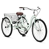 Adult Schwinn Tricycle Three (3) Wheeled Trike Men's Women's Bicycle Red Mint Green Blue Silver Grey Bike with Metal Wire Shopping Basket Beach Cruiser (Mint Green) by Meridian