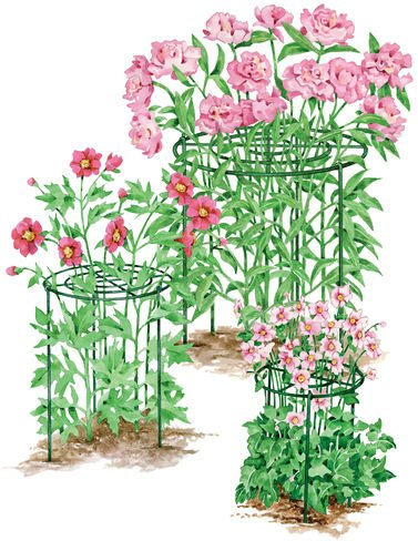 24-Grow-Through-Supports-Set-of-3