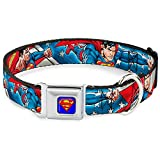 "Buckle-Down Seatbelt Buckle Dog Collar - Superman Action Poses/Stars & Stripes - 1"" Wide - Fits 15-26"" Neck - Large"