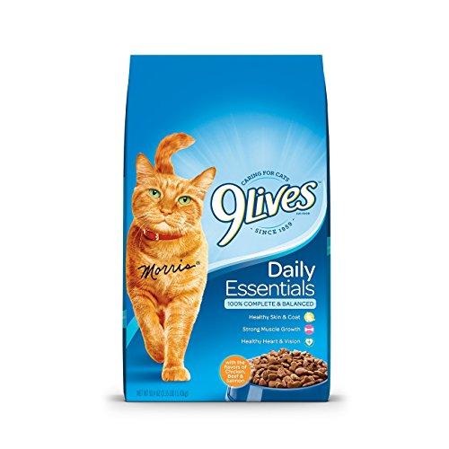 9Lives-Dry-Cat-Food