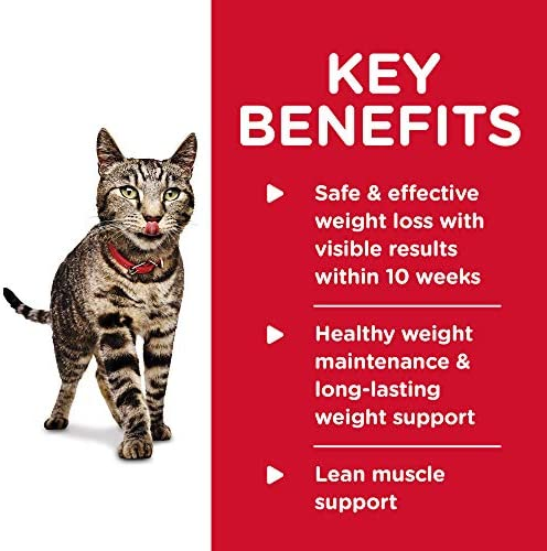 Hill's Science Diet Canned Wet Cat Food, Adult, Perfect Weight for Weight Management 4