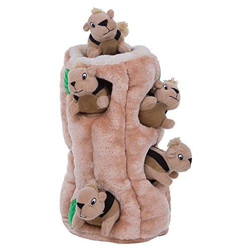 Hide and Seek Squirrel Interactive Dog Toy