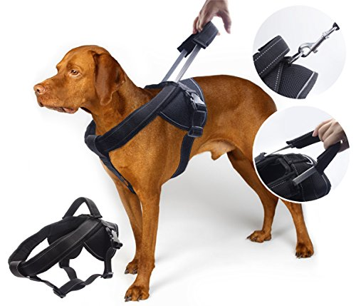 YOGADOG - Heavy Duty Dog Harness, Prevent Pulling, Soft Padded with Special Extended Integrated Short Leash Design, Reflective Stitching, for Medium and Large Dogs 1